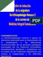 Taller de inducción morfofisiopatología humana II