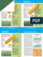 MK -Monsanto kukuruz