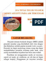 Aedes Aegepthy