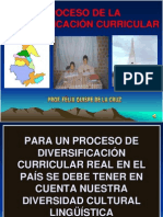 DIVERSIFICACIÓN CURRICULAR_MANUEL.ppt