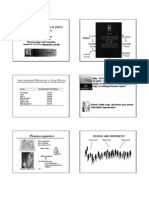 Damaj Pharmacogenetics