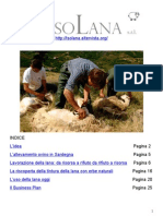 Progetto_IsoLana_R04