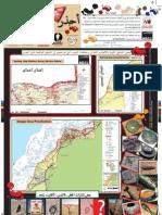 Un folleto advierte sobre el peligro de las minas en el Sáhara Occidental A