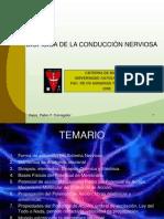 Biofisica Dela Conduccion Nerviosa