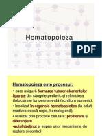 hematopoieza