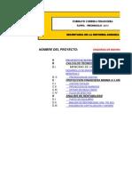 Corrida Financiera SRA 2013