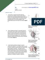 Cervical Oesophagotomy.pdf