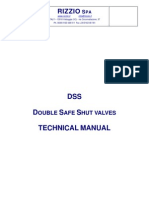DSS Valve
