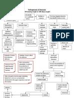 Pathogenesis of Pertussis PDF