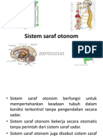 Saraf otonom koordinasi dan keseimbangan.pptx