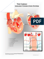 cardiac anatomy charts to help students understand the basic anatomy