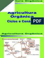 Agricultura Orgânica Ciclos e Cenários