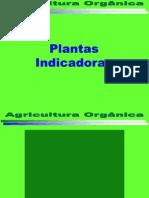 Agricultura Orgânica Plantas Indicadoras