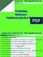 Agricultura Orgânica Produtividade