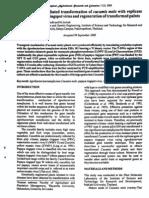Agrobacterium Mediated Transformation of Cucumis Melo