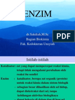 enzim1
