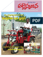 Palle SrujanaVol 4_issue 3 (Jul Aug 10)