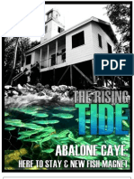Abalone Caye - Here to stay and new fish magnet