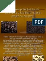 Evaluarea potenţialului de detectare a falsificarii cafelei prajite cu orz prajit