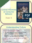 solomon consumer behavior ch16