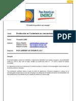 PAE-67 Produccion en Yacimiento No Convencionales