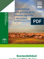 sostenibilidad_gestion_sistemas