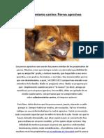 Adiestramiento canino - Perros agresivos