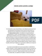 Adiestramiento canino - premio y castigo