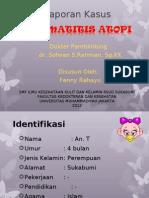 LapKas Dermatitis Atopi