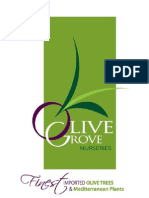 Brochure - Olive Grove Nurseries[1]