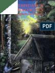 Ayahuasca Analogues – (Pangæn Entheogens)
