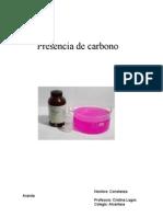 Presencia de Carbono