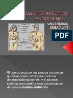 ABORDAJE TERAPEUTICO ENDOCRINO-1