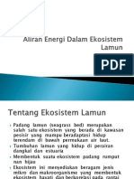 Aliran Energi Dalam Ekosistem Lamun