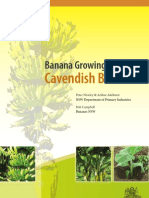 Banana Growing Guide