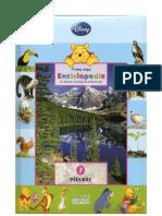 Enciclopedie copii - padurile
