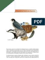 - Enciclopedia Vertebrados - Peces Anfibios Reptiles Aves Mamiferos 1910 Pag