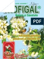 revista Hofigal