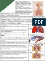 Ficha de Estudio Sistema Respiratorio 4