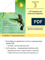 Chapter 3 - Cell Signaling and Endocrine Regulation