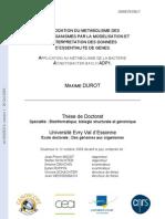 ÉLUCIDATION DU METABOLISME DES MICROORGANISMES PAR LA MODELISATION ET L'INTERPRETATION DES DONNEES D'ESSENTIALITE DE GENES. APPLICATION AU METABOLISME DE LA BACTERIE ACINETOBACTER BAYLYI ADP1.