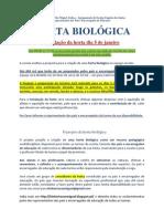 HORTA BIOLÓGICA info pais NOVO