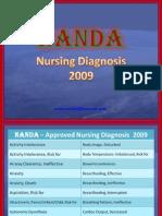 NANDA 2009