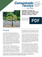 Podridão do Estipe da Palmeira-imperial (Roystonea oleracea (Jacq.) Cook) nos Estados do Ceará e Piauí