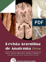 Revista de Anatomia Argentina5