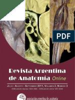 Revista de Anatomia Argentina7