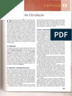 Cap 15 - Visão Geral da Circulação