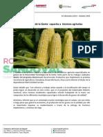 03-01-13 Boletin 1096 El Gobierno de la Gente  capacita a  técnicos agrícolas