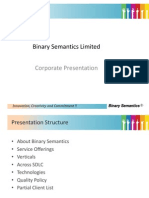 Binary Semantics Limited Corporate Overview