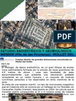 Estudio geobiologico sobre el Menhir de Mollet del VAllès